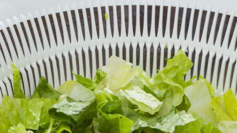 Salatschleuder Test